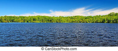 Panoramic view of Little Horsehead Lake on a summer day in northwoods Wisconsin.