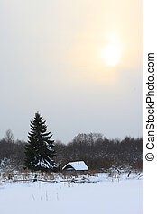 Little house in the winter forest under tree
