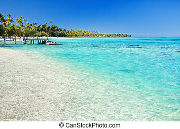 Little jetty on tropical beach with amazing water
