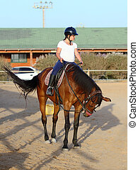 jockey - Little jockey and horse