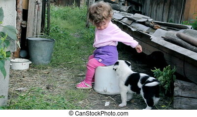 little kid playing with puppies