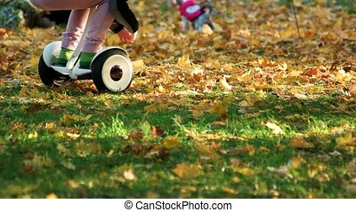Little kid riding gyroscooter on the grass.