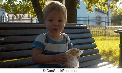 Little kid sitting on a bench and eating bun. He is glad and...