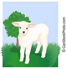 Little Lamb - Lamb. Religious Motif. Digital illustration. ...