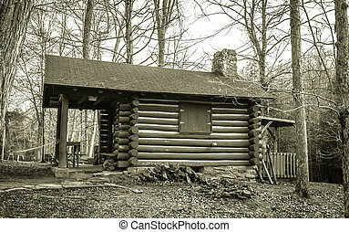 Little Log Cabin In The Woods