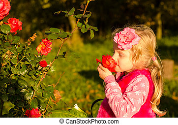 little lovely girl smelling rose flower