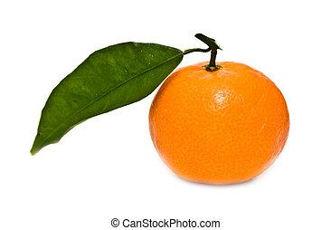 little mandarine on a white background