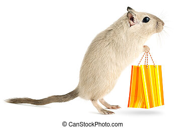 Little mouse goes shopping - Cute little gerbil with with...