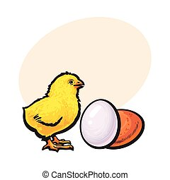Little newborn chicken and whole brown egg, sketch vector illustration