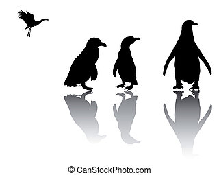 little penguin group with shadows