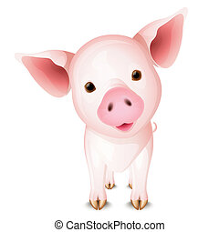 Little pig - Little pink pig isolated on white background