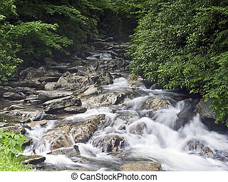 Little Pigeon River, Tennessee - The Little Pigeon River...