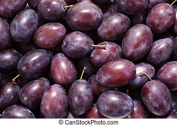 plum - little purple plums as background
