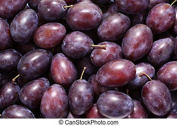 plum - little purple plums as background