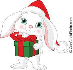 Little rabbit with Christmas gift