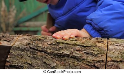 Little sawyer. Boy cutting wood with two man saw. Sawing log...