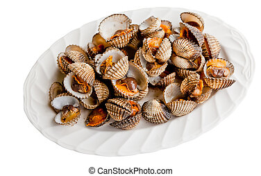 little sea shell cockle on dish isolated on white