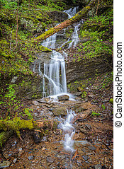Little Smoky Mountain Waterfall in Spring