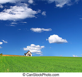 house in grass field