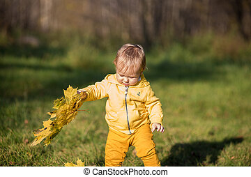 Little todler boy playing with autumn yellow leaves on the ...