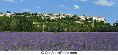 Sault in Provence - little town on hill, Sault in Provence,...