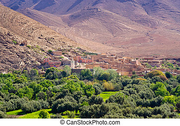 Little village and oasis, Morocco