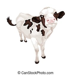 Little white cow with black spots. Vector illustration
