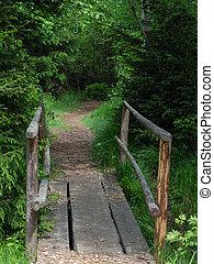 Little wooden bridge over creek in forest