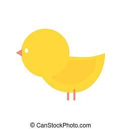 Little yellow chicken isolated. Small farm bird