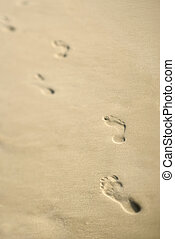 littoral, footprints.