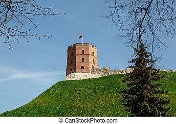 lituania, torre, gediminas