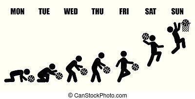 liv, basketboll, utveckling, arbete, varje vecka