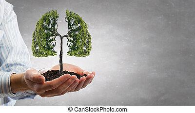 liv, beskyttelse, grønne