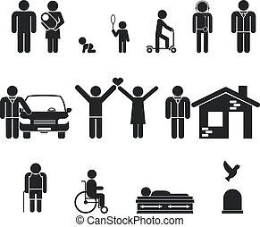 liv, död, gammal, stage., youth, ålder, födelse, vuxen ålder...