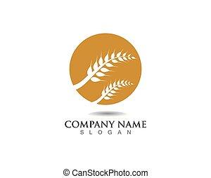 liv, hvede, skabelon, vektor, logo, landbrug, ikon