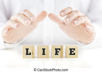 liv, ord, över, jag cupped händer, uppföd, man