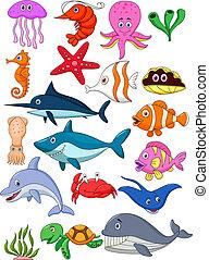 liv, sæt, cartoon, hav