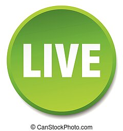 live green round flat isolated push button
