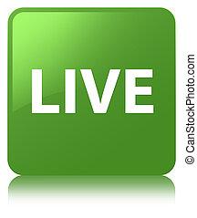 Live soft green square button