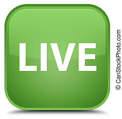 Live special soft green square button