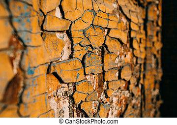livelli, differente, vecchio, legno, vernice, colori, porta
