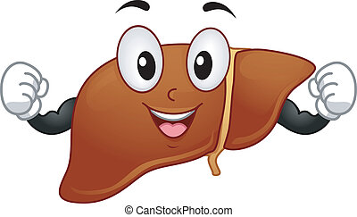Liver Mascot - Mascot Illustration Featuring a Liver Flexing...