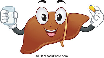 Liver Mascot - Mascot Illustration Featuring a Liver Holding...
