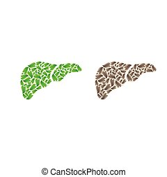 Liver silhouette with leaves