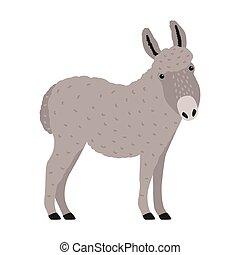 livestock., moderno, doméstico, moderno, retrato, style., trabajando, burro, aislado, fondo., divertido, dibujado, blanco, animal, adorable, asno, colorido, granja, ilustración, burro, caricatura, gris, vector, o