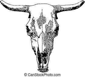 Vector livestock skull isolated on white background.