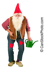 Living garden gnome with watering can - Funny garden gnome...
