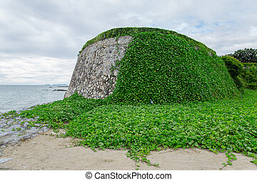 Walls on a beach covered with vines