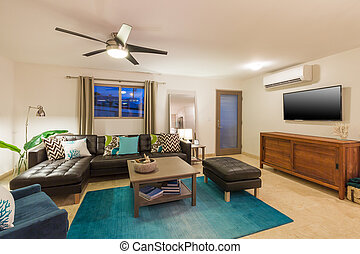 Living Room in Contemporary Home