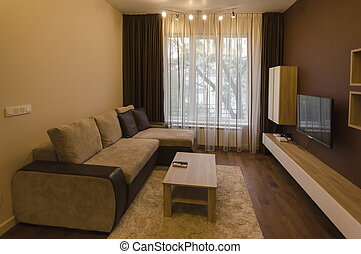 Living room in renovated apartmen
